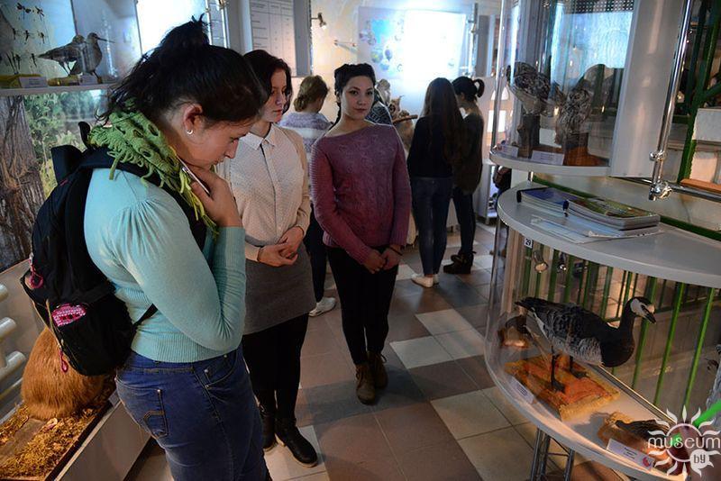 Экскурсия «Утиные в экспозиции Природно-экологического музея»